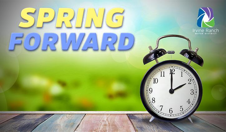 725x425-2019_spring_forward